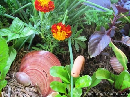 One Of My Micro Gardens   An Edible Veggie U0026 Herb Garden In A Box.