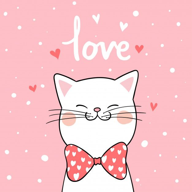 Draw White Cat With Pink Background For Valentine