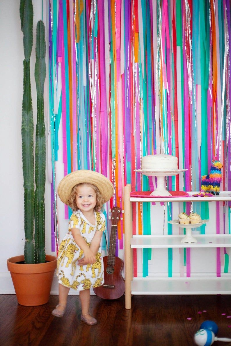 Fiesta Backdrop, Fiesta Decorations, Streamer Backdrop, Fringe Backdrop, Rainbow Fiesta, First Fiesta, Photo Booth, Cinco de Mayo