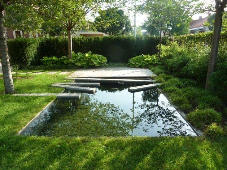 The Dark Mirror: A Backyard Reflecting Pool in Eastern ...