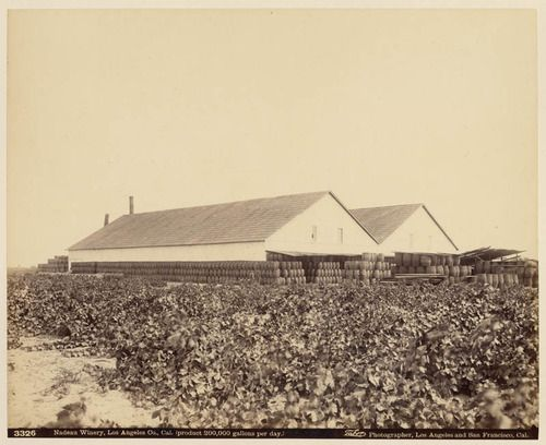 Nadeau Winery, circa 1886. Isaiah West Taber, photographer. For more great photos, check out our picture collections!