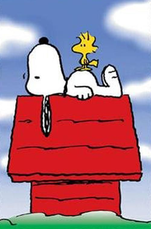 The All Knowing Snoopy Snoopy Dog House Snoopy Love