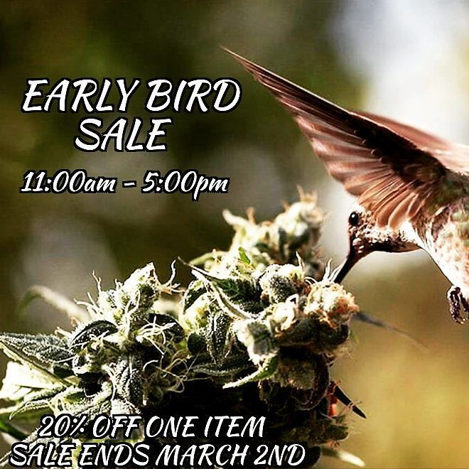 Some conditions apply #earlybird #sale #friendlystranger #thefriendlystranger #keepitgreen #its420somewhere #cannabis #marijuana #weed #cannabisculture #canadianstoners #torontostoners #marijuanamovement #cloudsovercanada #gettingbaked #highlife  #hotboxtheinternet #smokeweedeveryday #toke #cannabiscultureshop #toronto  #smokeshop #buylocal #qwcc #queenwestclassicsclub #6ix #puffpuffpass