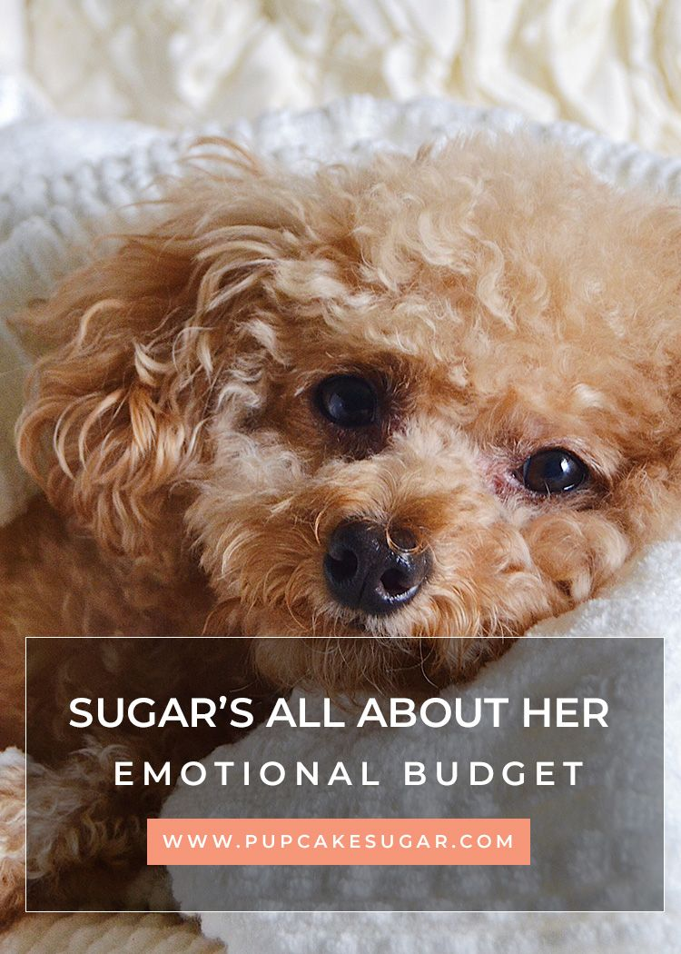 Sugar shares what she learned from her
