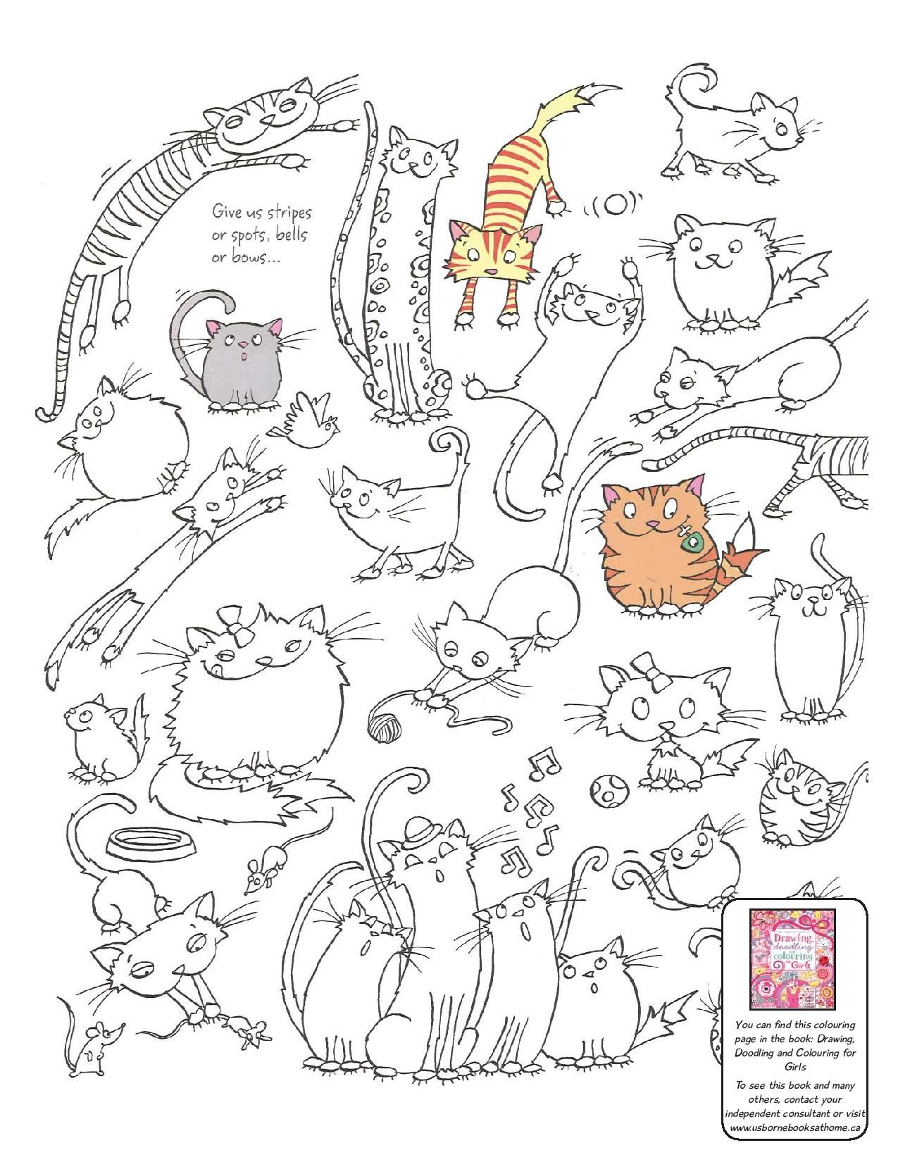 printable cat colouring page from usborne drawing doodling and