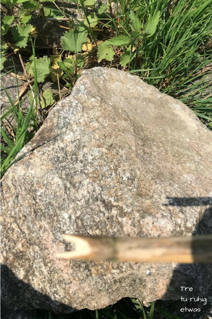 Pfeil Und Bogen Aus Haselnuss Und Schilfrohr Einfach Selber Bauen Tre In 2020 Pfeil Und Bogen Schilf Selber Bauen