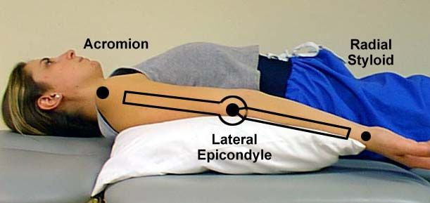 Elbow Extension 0*   Physical therapist assistant, Muscle ...