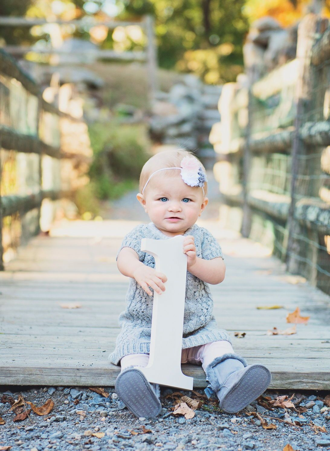 1 Sign Photo Prop for First Birthday Photo Shoot for