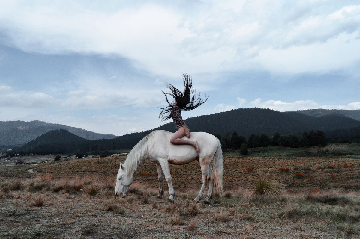 Karen Cantú Q Horses, Horse pictures, Horse photos