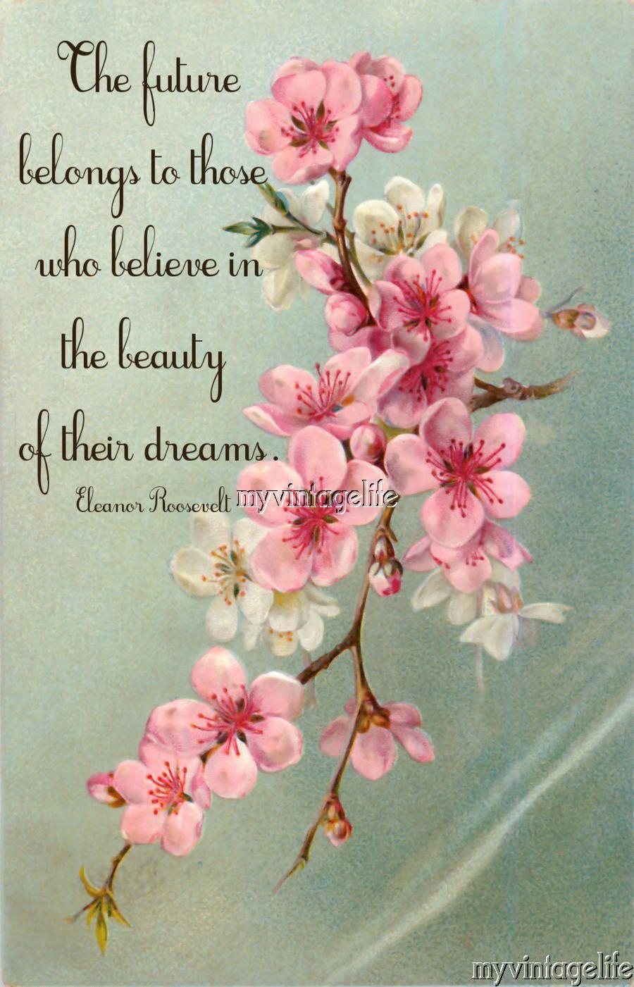 Believe in your Dreams Eleanor Roosevelt Quote Quilting Fabric Block ...