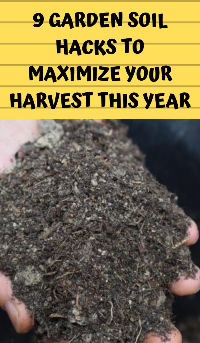 Soil Preparation How To Create Healthy Soil Organic Gardening Tips Garden Soil Organic Vegetable Garden
