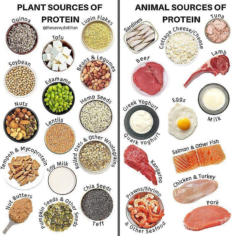 """Meal Prep On Fleek on Instagram: """"Are you a plant-based protein, animal  protein or a combination of both kin…   Plant protein, Plant protein  sources, Animal protein"""