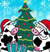 Les 2 Vaches aussi ont le droit de fêter Noël !