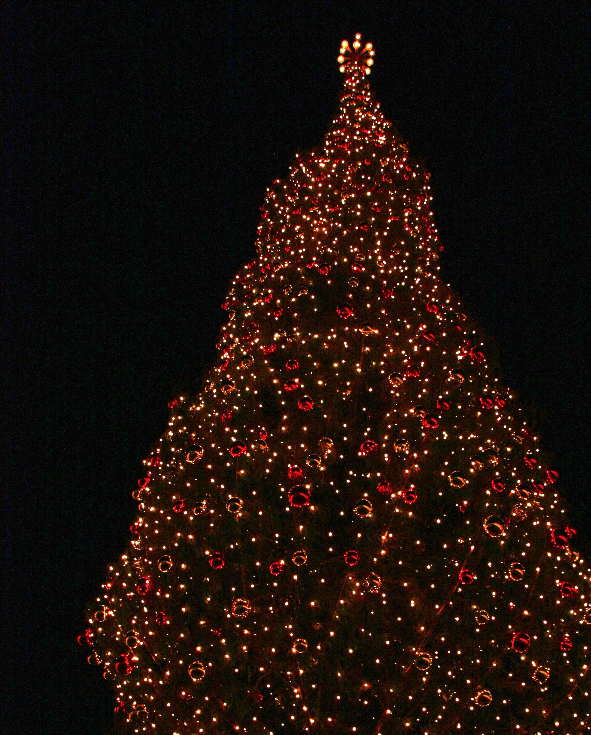 Mayors Christmas Tree At Crown Center In Kansas City, MO