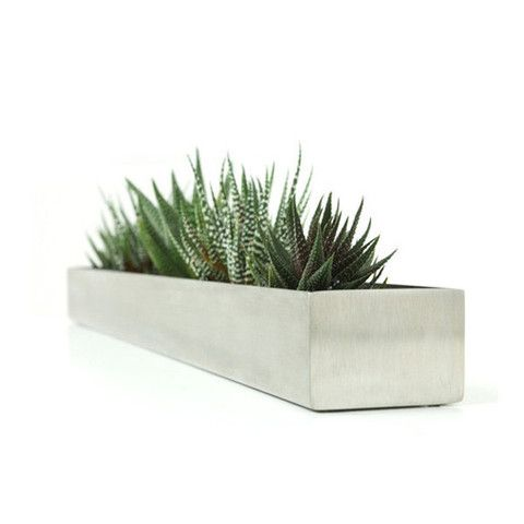 Gus Modern Fruit Trough Planter with Succulents