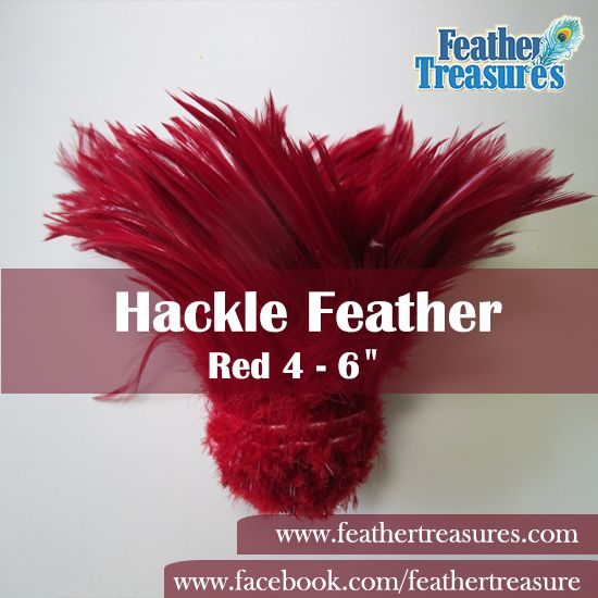 """#HackleFeather- Red 4 - 6"""" - 5/6 Yards Per Pound ($75.00) http://www.feathertreasures.com/products/4-6-hackle-feather-red"""