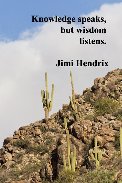 """""""Knowledge speaks, but wisdom listens.""""  -- Jimi Hendrix – On image in Tortolito Mountains, from Wild Burro Trail, taken by Florence McGinn – Enjoy insightful quotes from creative spirits such as Leonard Cohen, Pink Floyd, Eric Clapton, Van Morrison, and others at www.examiner.com/...  or explore at the themed music Pinterest board at pinterest.com/..."""