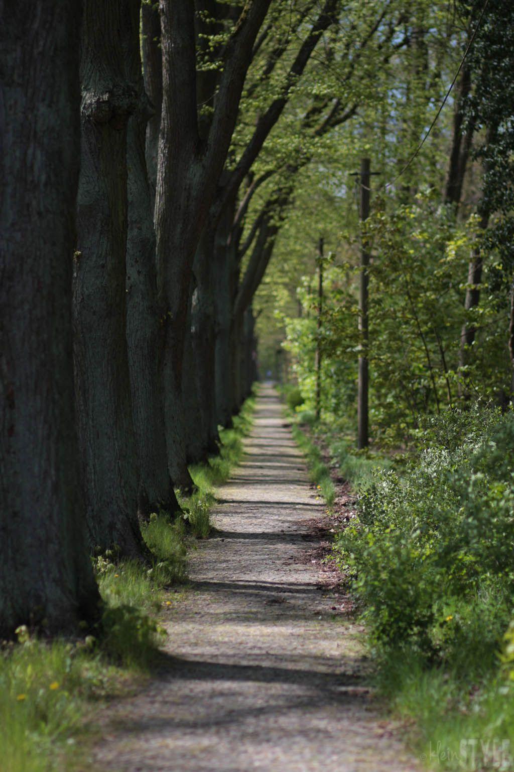 kleinSTYLE   Hallo Mai : von Festlichkeiten, To-Do Listen und dem Gefühl der Überforderung {inkl. Literatur and Tipps}   http://kleinstyle.com
