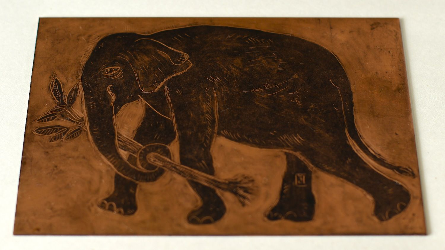 The painted copper plate of a monotype featuring the Asian Elephant.