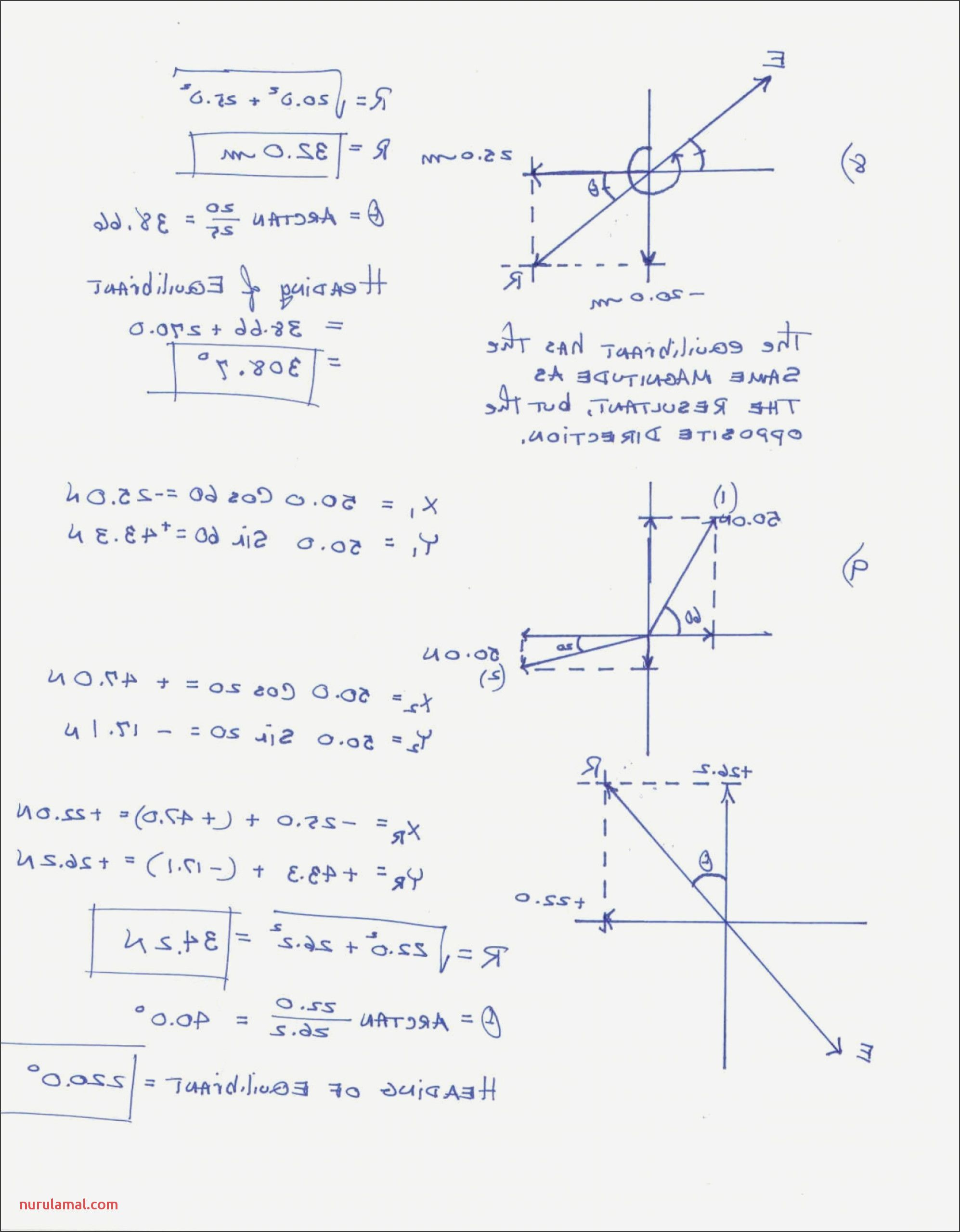 7th Grade Math Worksheets Printable In 2020 Math Worksheets Kindergarten Math Worksheets Geometry Worksheets
