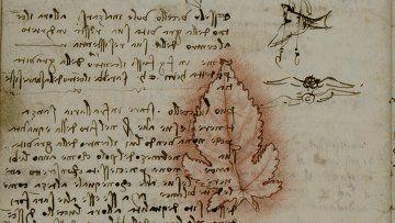 сквозь-время-разное-книга-леонардо-да-винчи-1673291.jpeg (360×217)