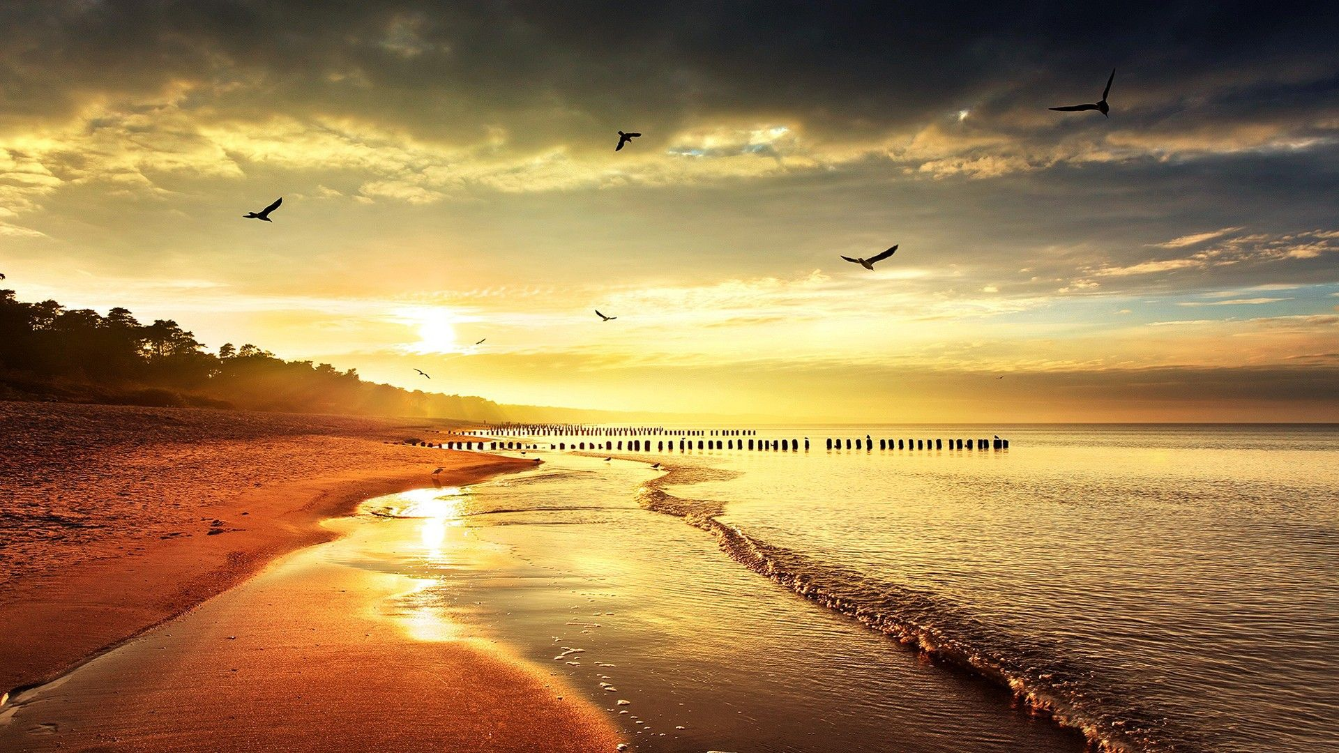 beach sunset wallpaper 1920a—1080 beach sunset wallpaper 46 wallpapers adorable wallpapers
