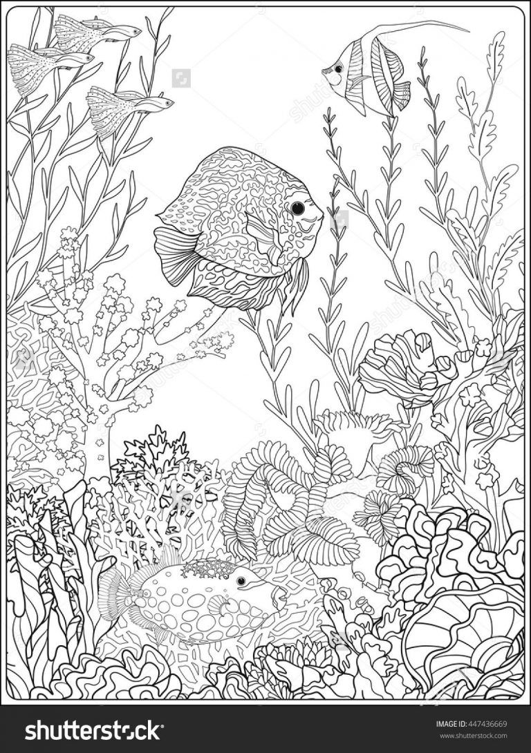 Pin On Fish Coloring Pages