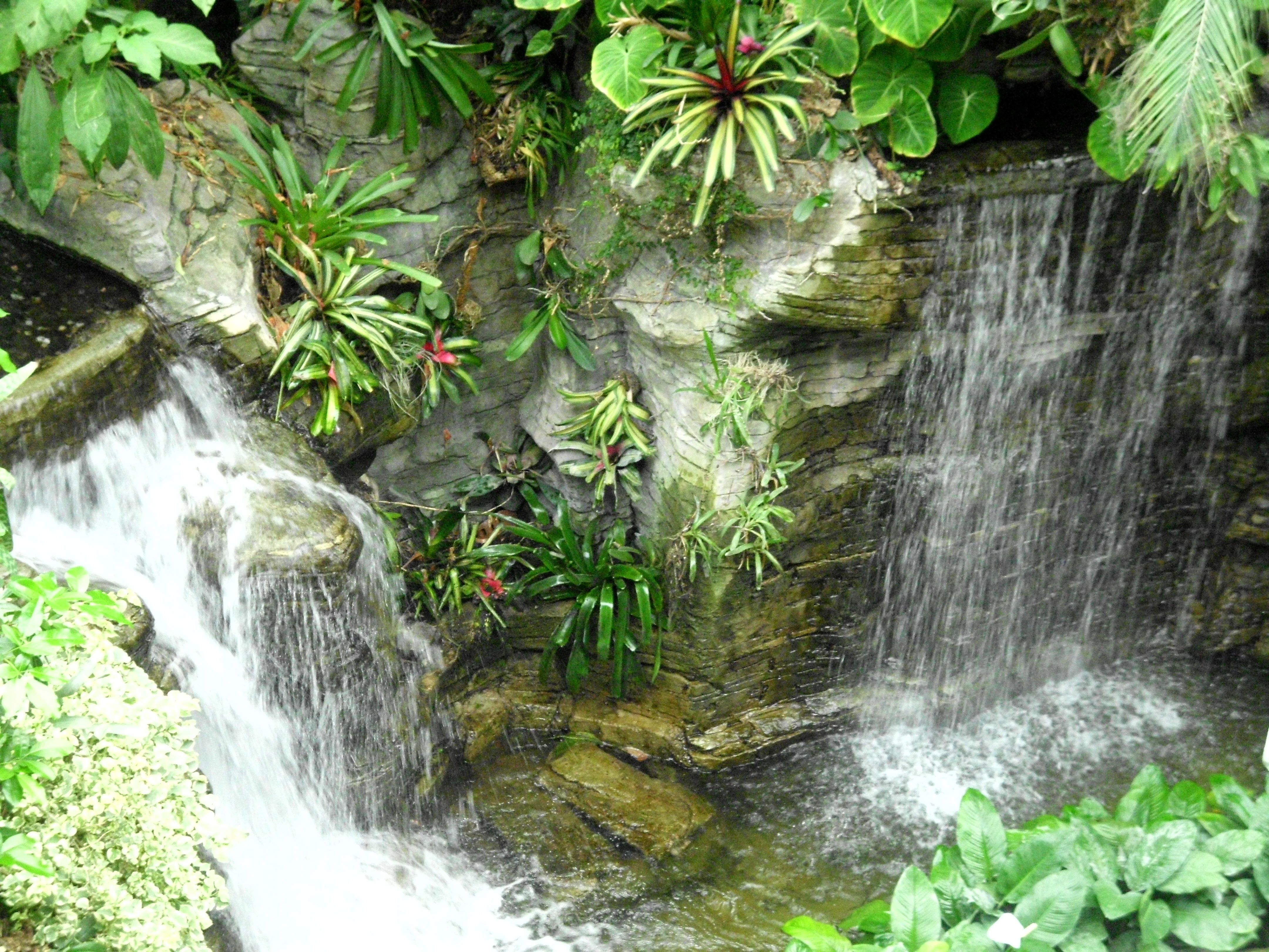 Waterfall Grand Ole Opry Hotel Botanical