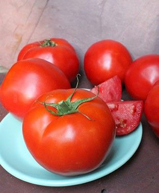 Summer Set Tomato New For 2012 Growing Tomatoes From Seed Growing Tomatoes Varieties Of Tomatoes