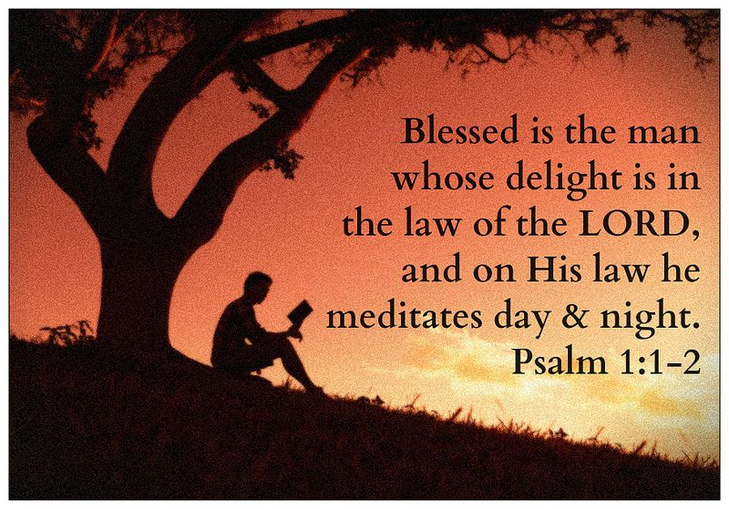 Psalm 1:1-2 | Bible psalms, Psalms, Psalm 1
