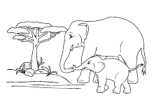 elefantenmama mit ihrem elefantenkind | tiere zum ausmalen
