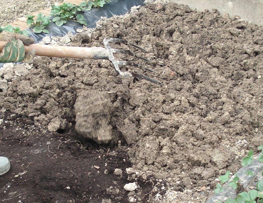 Seminala condivide i primi lavori nell'orto  per coltivare poi ortaggi squisiti.