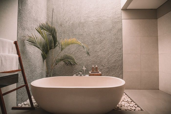 Spa like bathroom with stand alone tub and plants