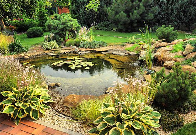Natural Garden Pond Design A Natural Garden Pond Building Guide And Practical Ideas Pond Landscaping Water Features In The Garden Ponds Backyard
