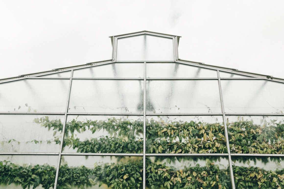 The Search for the World's Most Enchanting Greenhouses ...