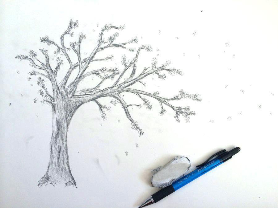 Cherry Blossom Tree Drawing Autodialer Info Sketsa Menggambar Bunga Tato Pohon