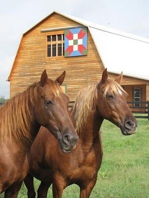 Is That A Sliding Barn Door Quilt Barns Old And New