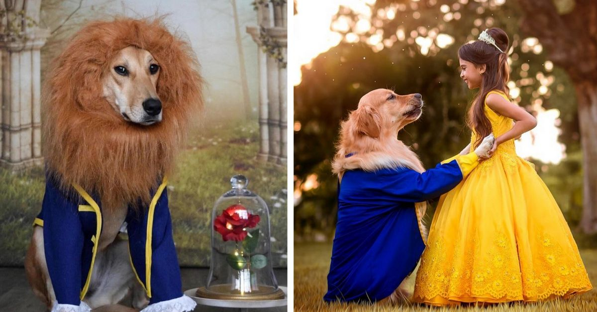 9 Enchanting Pets Bamboozling Us In Disney S Beauty The Beast