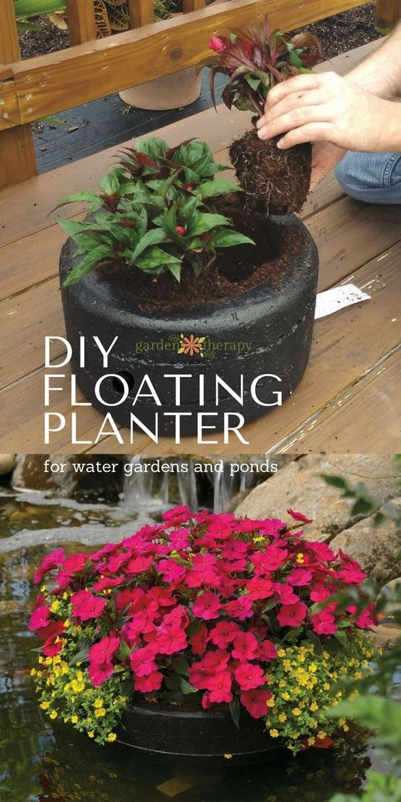 Diy Floating Planter For Water Gardens And Ponds 640 x 480