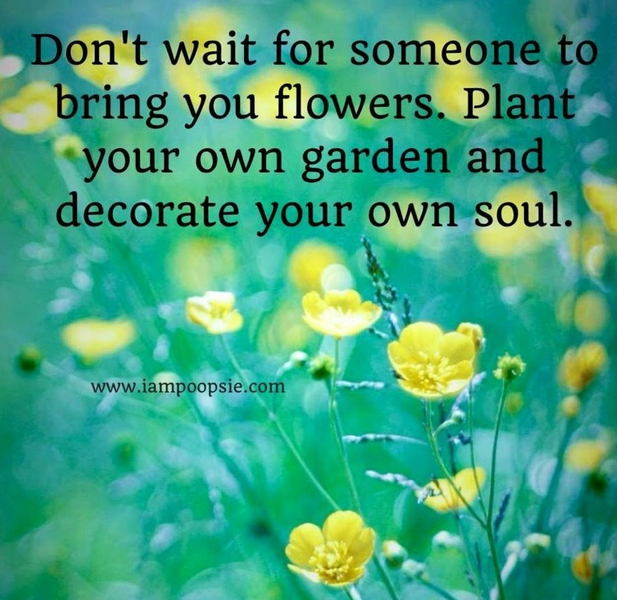 Inspirational Quotes About Flowers Blooming. QuotesGram | Quotes