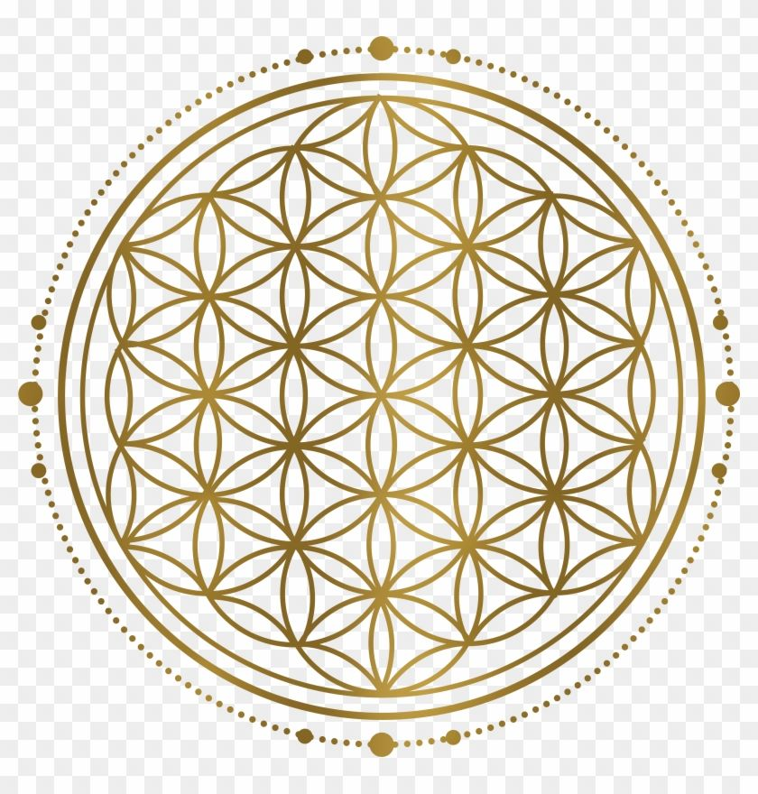 Find Hd Sacred Geometry Png Perfect Flower Of Life Transparent Png To Search And Download More Free T Flower Of Life Sacred Geometry Flower Of Life Pattern