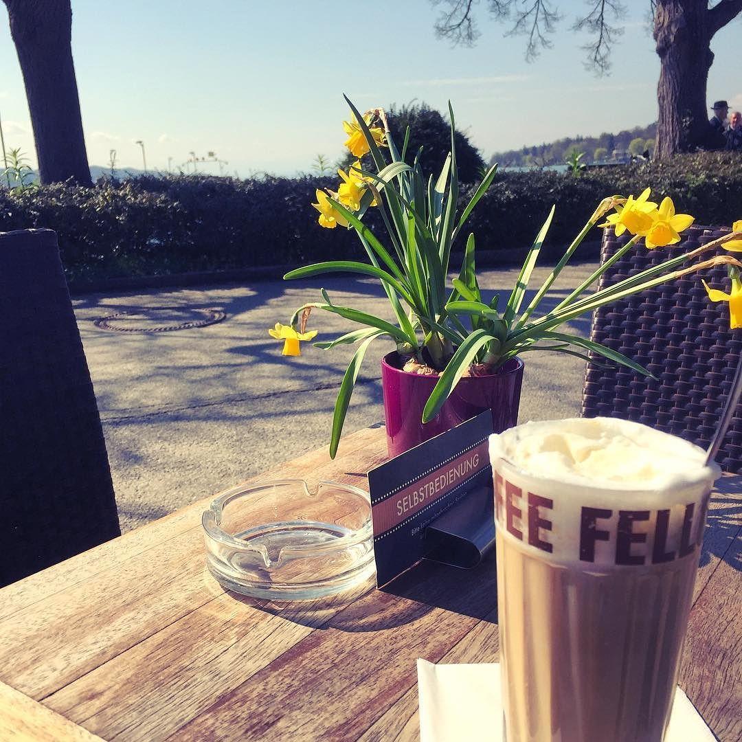Coffee in the sunshine  #starnberg #starnbergersee #coffeefellows #alpen #alps #oberbayern #oberland #sunshine #spring #coffee #kaffee #frühling #manmusssichauchmalwasgönnen #vitamindtanken