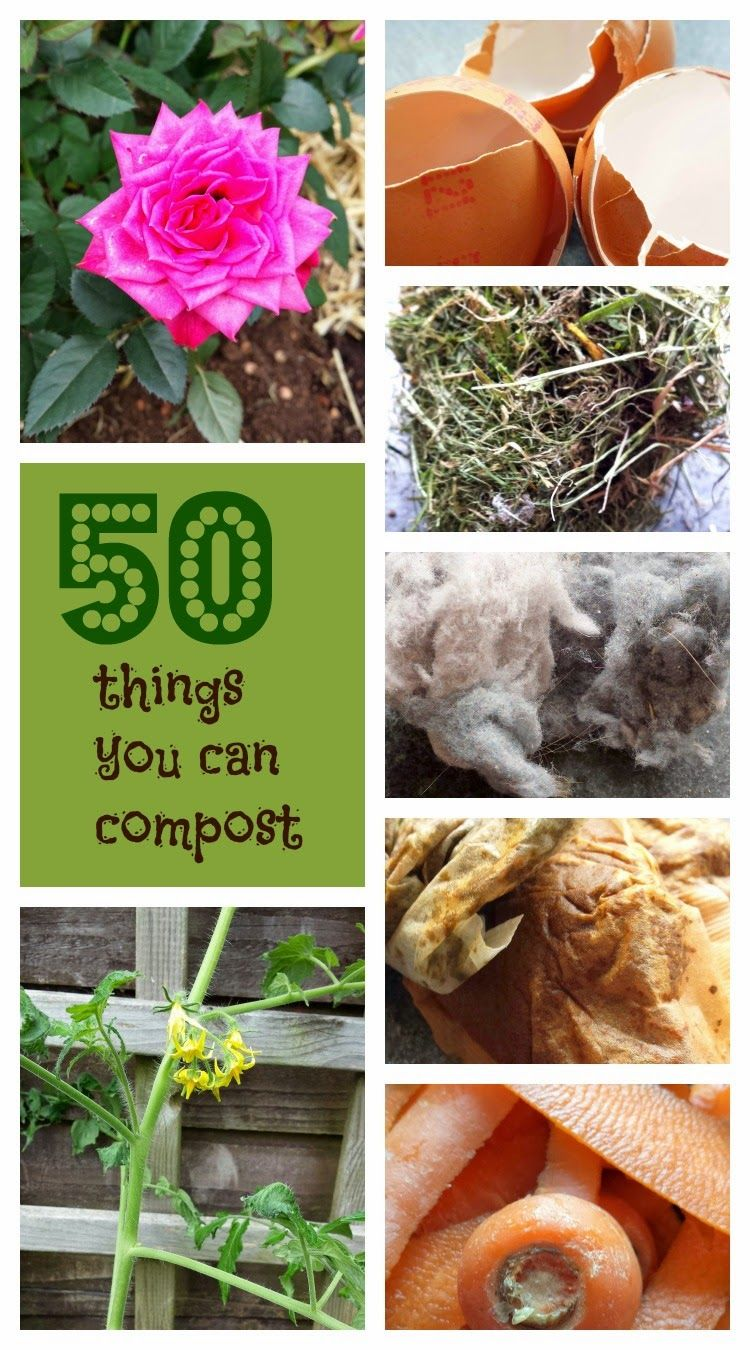 It is a photo of Witty Printable Compost List