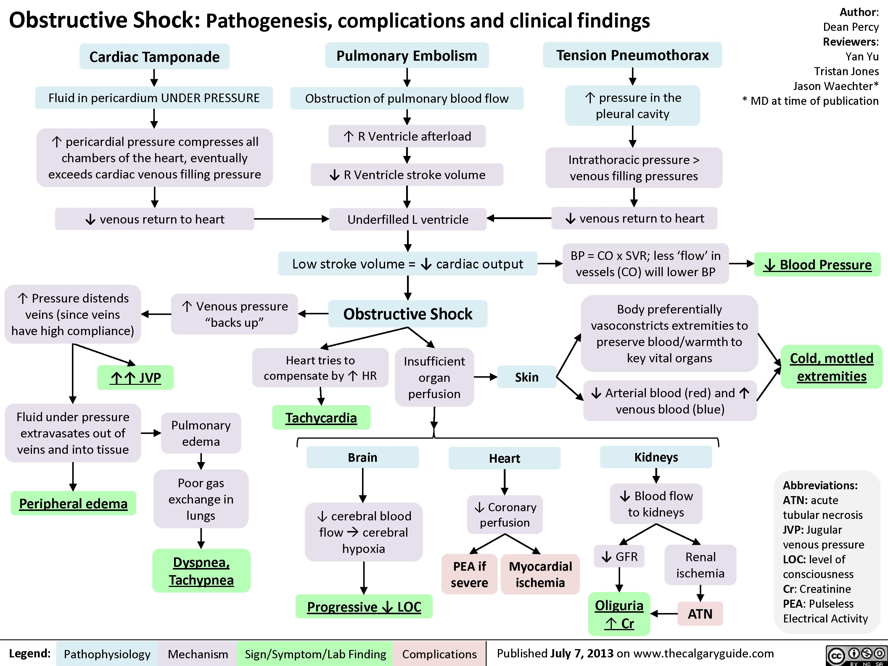 Obstructive Shock Pathogenesis Complications And Clinical Findings