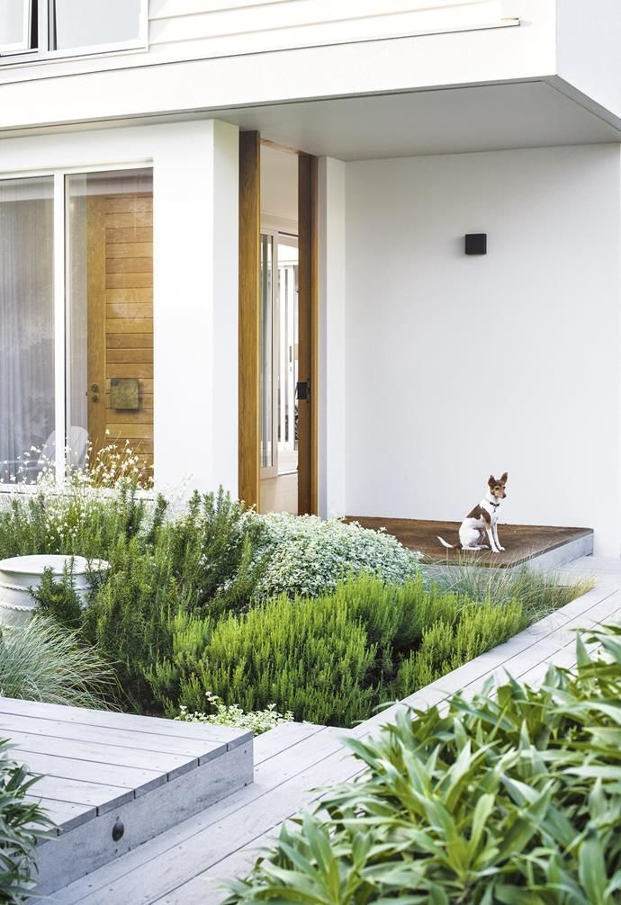Photo of Fragrant plantings combine with a relaxed, contemporary approach in this family-…