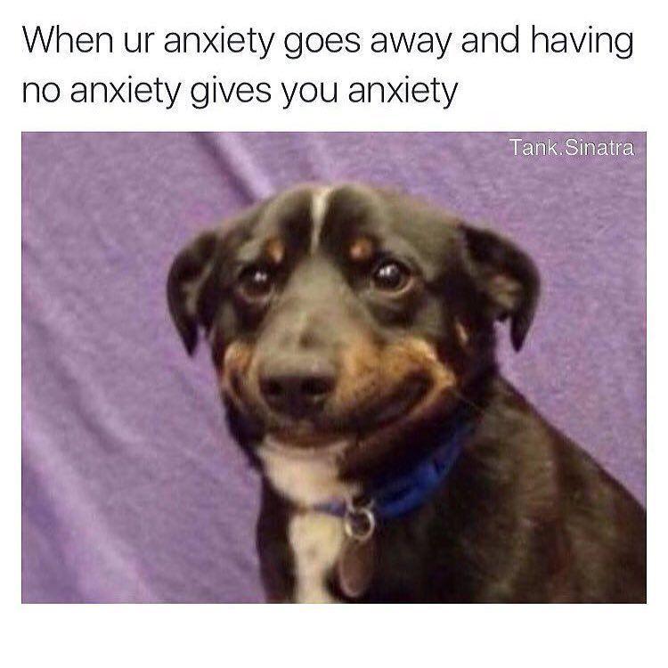 Yoga Memes Yoga Funny Memes Funny Yoga Memes Yoga Memes Funny Pilates Memes Yoga Funny Humor Yoga Humor Fun Funny Dog Memes Funny Yoga Memes Really Funny Memes