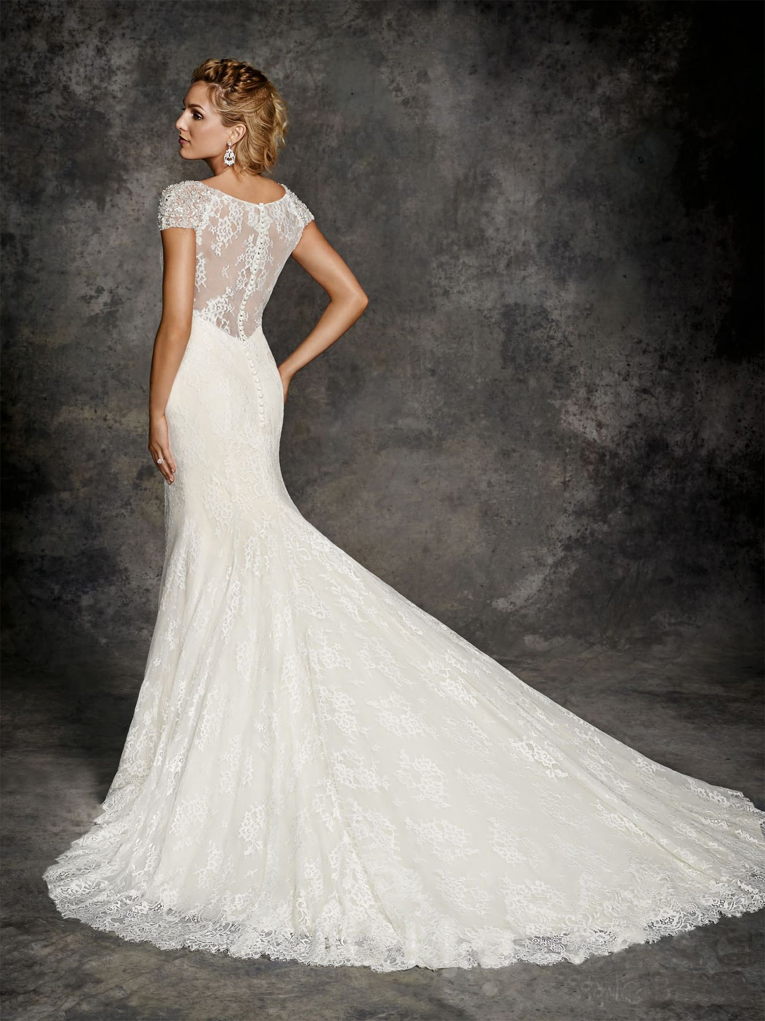 Delicate lace Slim line gown with illusion lace detail back.
