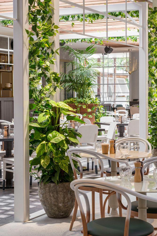 Www Dbidesign Com Au Portfolio Garden Kitchen Amp Bar Jupiters