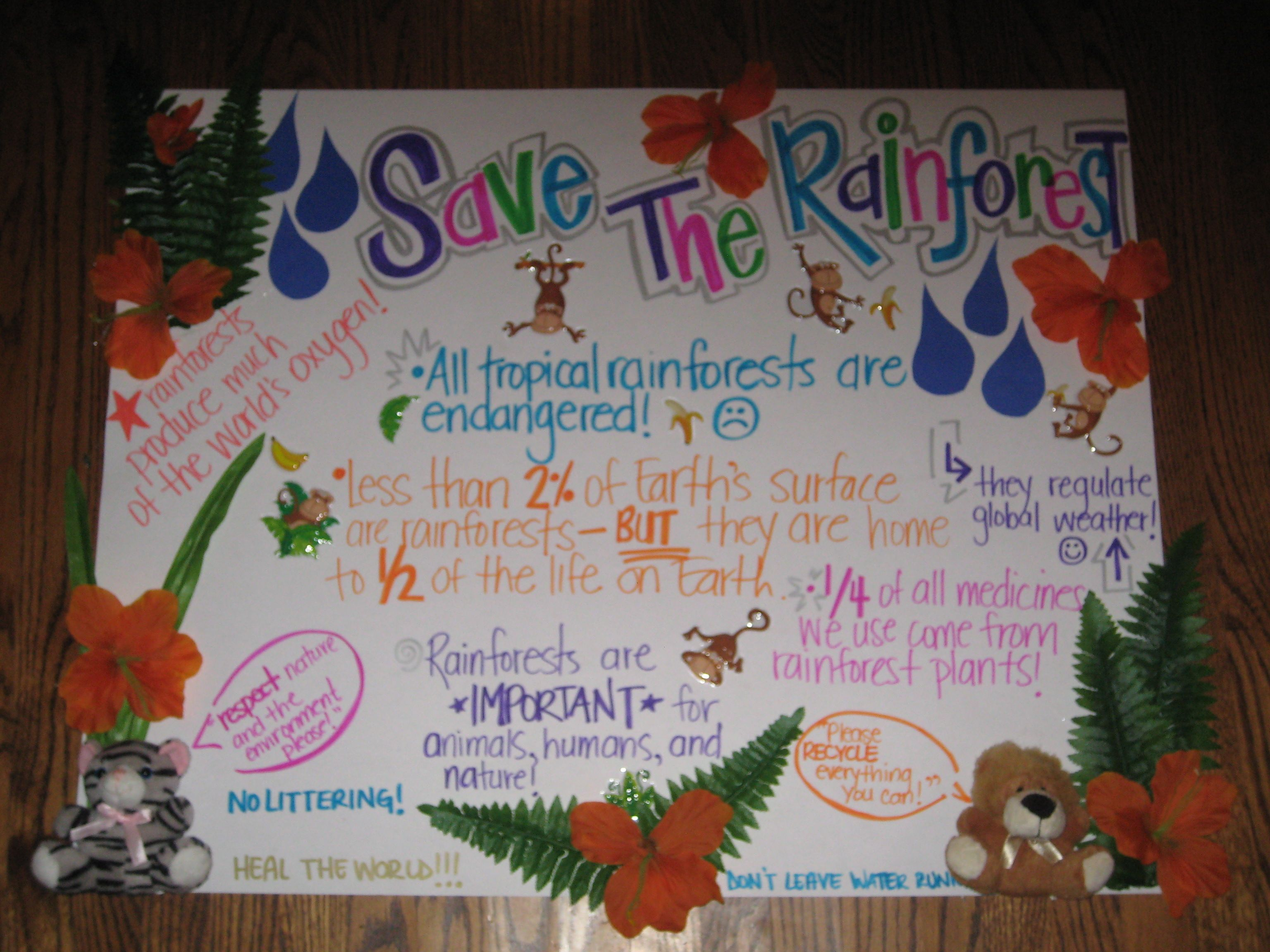 Previous Pinner Save The Rainforest Project Poster