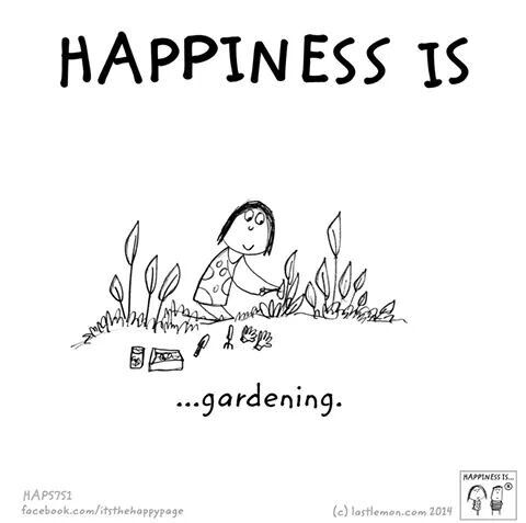 94e9ea3422e55aec87f73d3191cb9b5b - Why Does Gardening Make You Happy